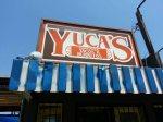 Yuca's sign