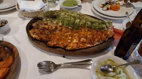 mexicocityfish
